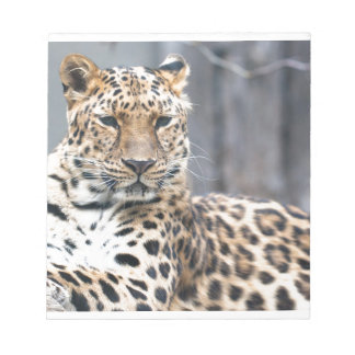 Amur Leopard Notepad