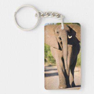 An African Elephant (Loxodonta Africana) Walks Double-Sided Rectangular Acrylic Key Ring