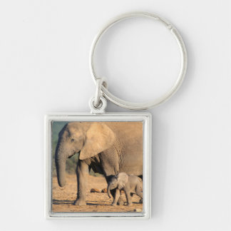 An African Elephant mother and calf on the move Key Chain