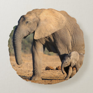 An African Elephant mother and calf on the move Round Cushion