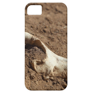 An animal skull covered with dry earth. case for the iPhone 5