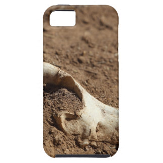 An animal skull covered with dry earth. iPhone 5 case