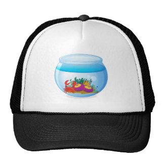 An aquarium with sea creatures cap