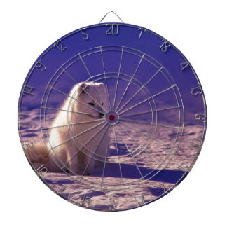 An Arctic Fox in Norway Dartboard