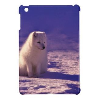 An Arctic Fox in Norway iPad Mini Case