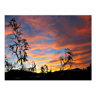 An Arizona Sunset Postcard