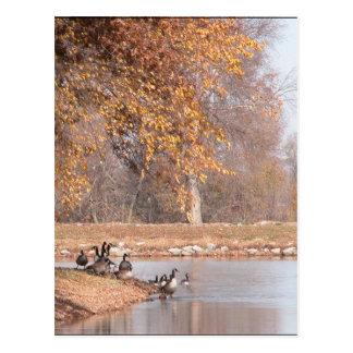 An Autumn Day Postcards