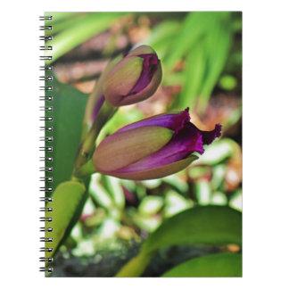 An Awakening- vertical Notebook