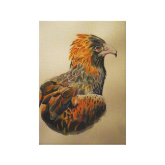 An eagles gaze canvas print
