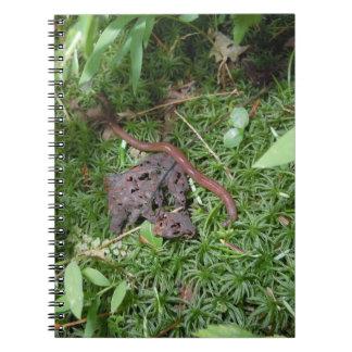 An Earthworm Notebooks