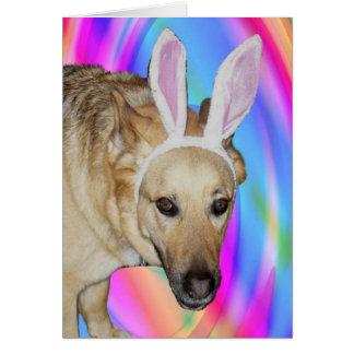 An Easter Bunny? Card
