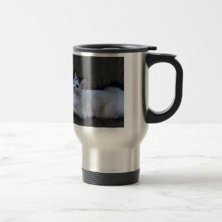 an elegant cat mug