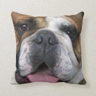 An english bulldog in Belgium. Throw Pillow