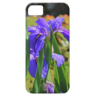 An Igniting Attraction I iPhone 5 Cover