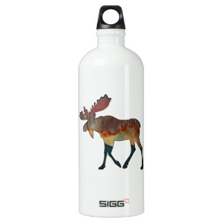 An Incredible Journey Water Bottle