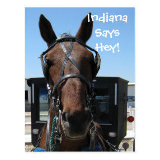 An Indiana Hey! Postcard