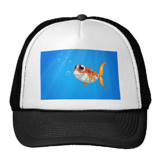 An orange fish with big eyes under the sea cap