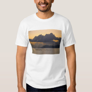 An outrigger canoe team practices off the coast t shirt
