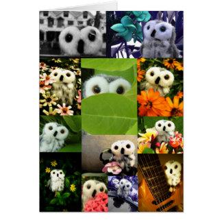 An Owl Named Ophelia Card