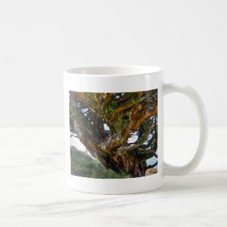 An Upside Down Tree Coffee Mug