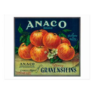 Anaco Apple Crate Label Postcard
