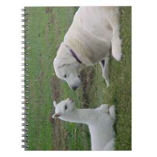 Anatolian Shepherd and Alpaca Cria Notebooks