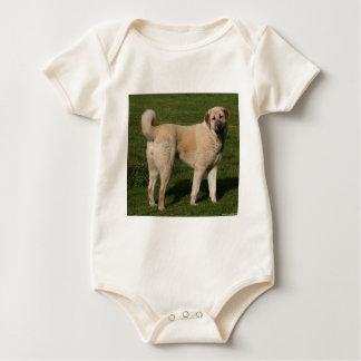 Anatolian Shepherd Dog Baby Bodysuit