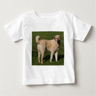 Anatolian Shepherd Dog Baby T-Shirt