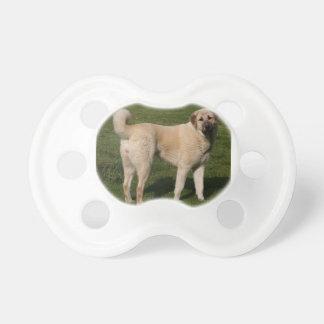 Anatolian Shepherd Dog Dummy