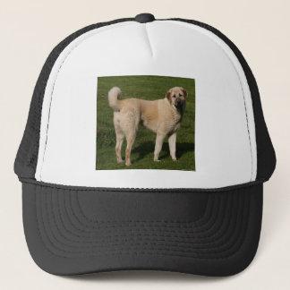 Anatolian Shepherd Dog Trucker Hat