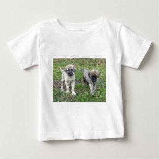 Anatolian Shepherd Puppies Dog Baby T-Shirt