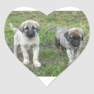 Anatolian Shepherd Puppies Dog Heart Sticker
