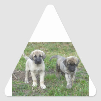 Anatolian Shepherd Puppies Dog Triangle Sticker