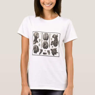 Anatomical Brain and More T-Shirt