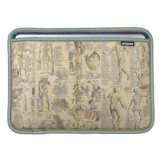 Anatomical Chart from Cyclopaedia 1728 MacBook Air Sleeves
