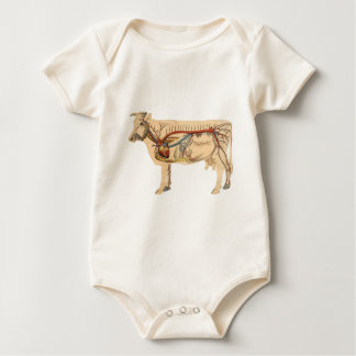 Anatomical Cute Cow Baby Bodysuit