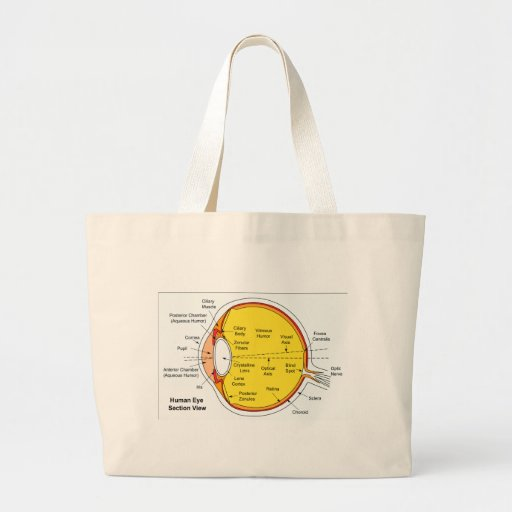 Anatomical Diagram of the Human Eye Ball Canvas Bag