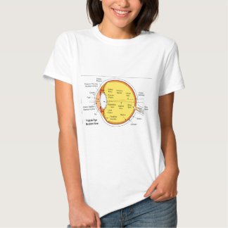 Anatomical Diagram of the Human Eye Ball T Shirts