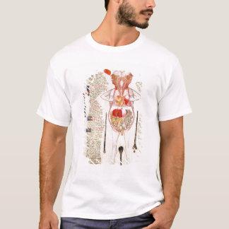 Anatomical diagram T-Shirt