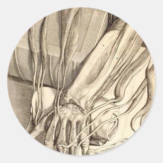 Anatomical Hand Sketch Round Sticker