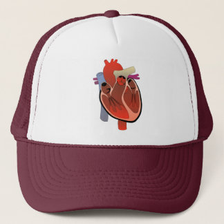 ANATOMICAL HEART DRAWING TRUCKER HAT