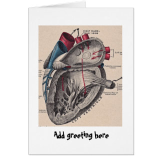 Anatomical Heart vintage diagram personalized Card