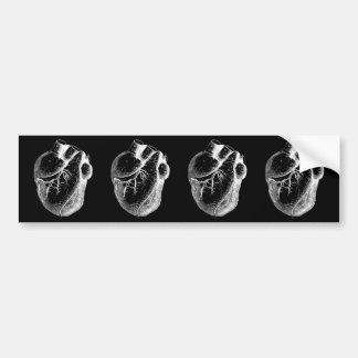 Anatomical Heart White On Black Bumper Sticker