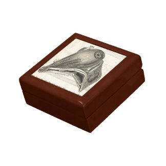 Anatomical Model of the Eye Gift Box