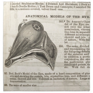 Anatomical Model of the Eye Napkin