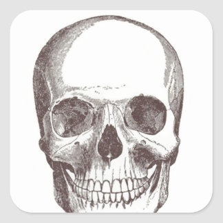 Anatomical Skull, Black/White Square Sticker