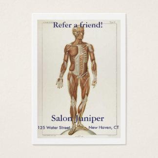 Anatomy Anterior