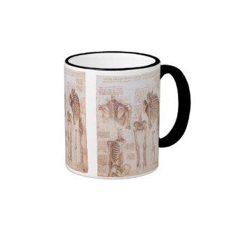Anatomy Drawings Human Skeletons Leonardo da Vinci Mugs