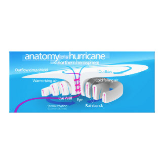 Anatomy of a Hurricane Diagram Stretched Canvas Print