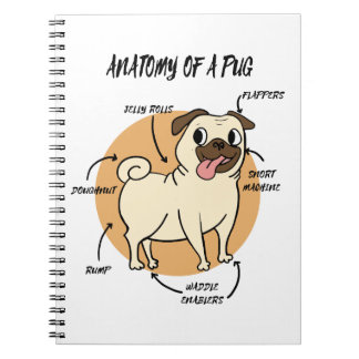 ANATOMY OF A PUG NOTEBOOK